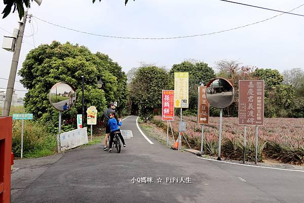 嘉義自行車道10.jpg