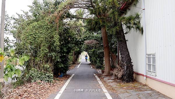 嘉義自行車道13.jpg