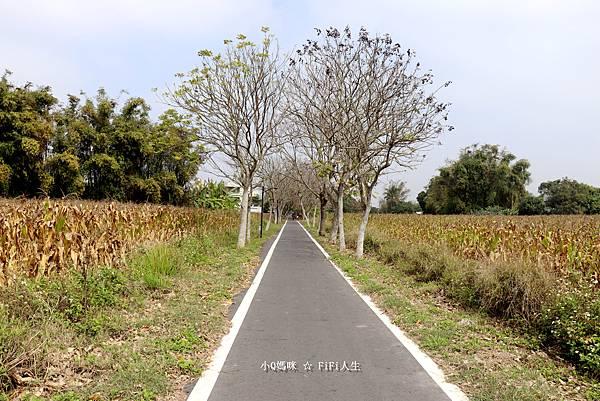 嘉義自行車道14.jpg