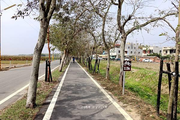 嘉義自行車道27.jpg