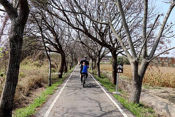 嘉義自行車道37.jpg