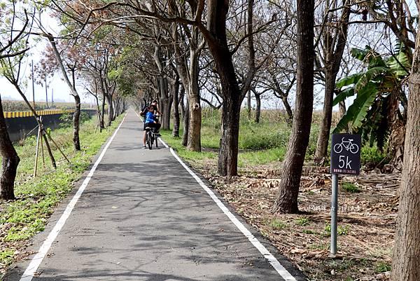 嘉義自行車道35.jpg