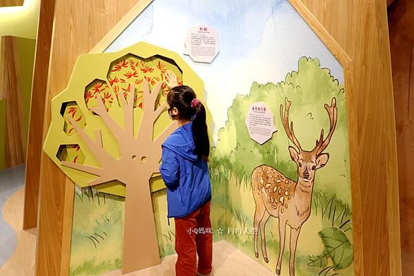 嘉義博物館兒童42.jpg