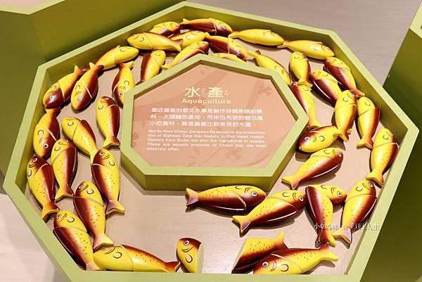 嘉義博物館兒童67.jpg