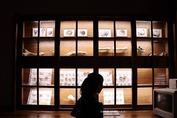 嘉義博物館兒童112.jpg
