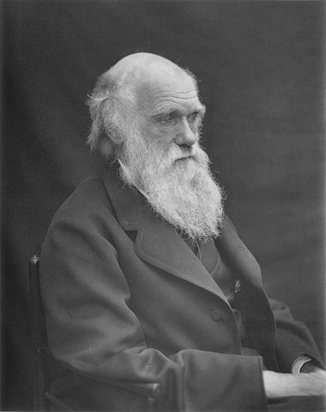 476px-1878_Darwin_photo_by_Leonard_from_Woodall_1884_-_cropped_grayed_partially_cleaned
