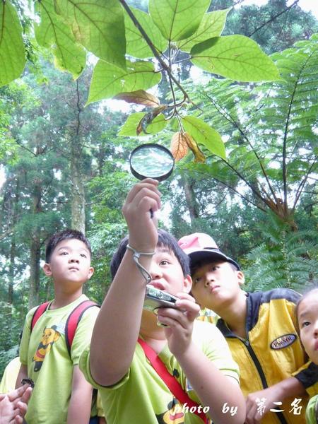 蟲林探險記
