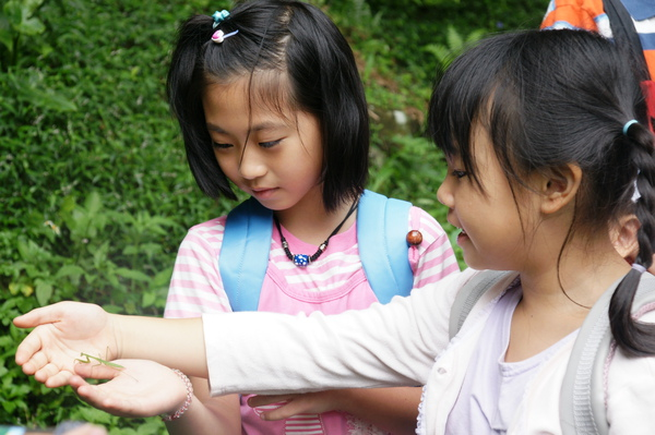 2009.7.3蟲二-8.JPG
