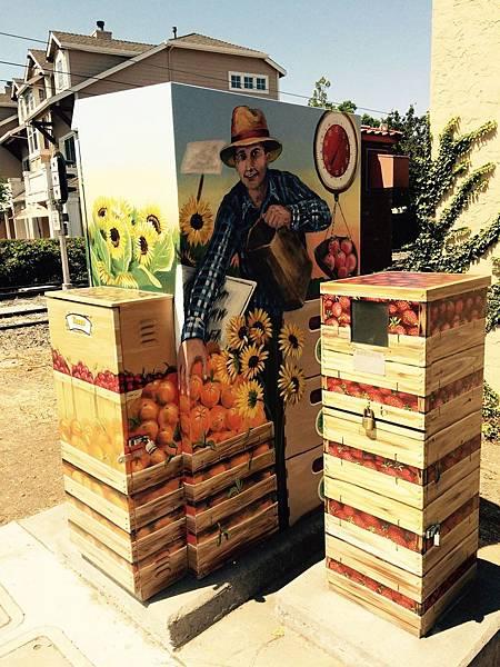 農夫市集主題藝術箱子.jpg