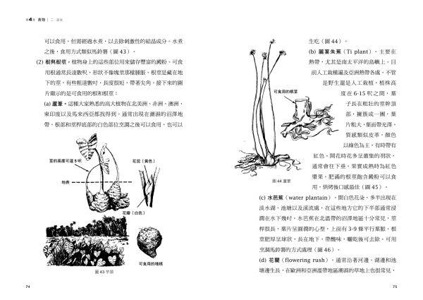 求生手冊-內文38