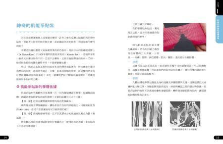 肌能系貼紮-內文0917-低檔完整8