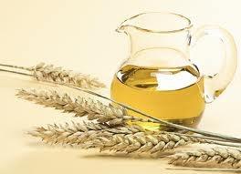 1113_小麥胚芽油