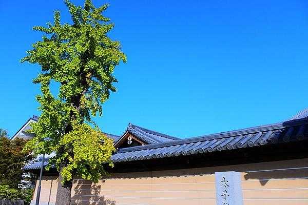 日本DAY3 (22).JPG