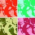 warholizer0733390c5c7bf3083c4d28274b36a4694a46191d.jpg