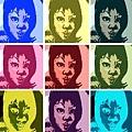 warholizer7e7a3c5a636423db722c841b94a853659a69f164.jpg