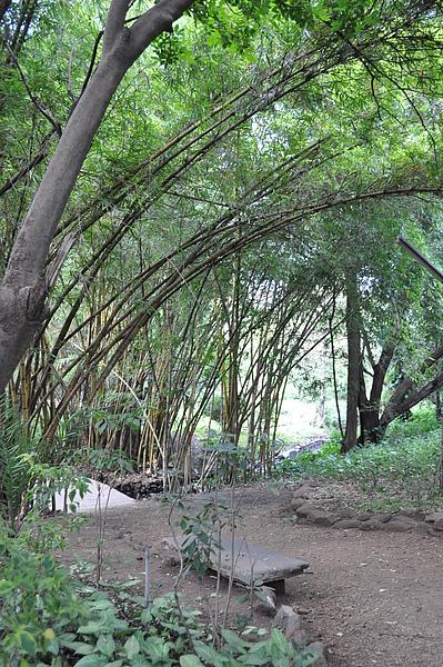 Koregon Park