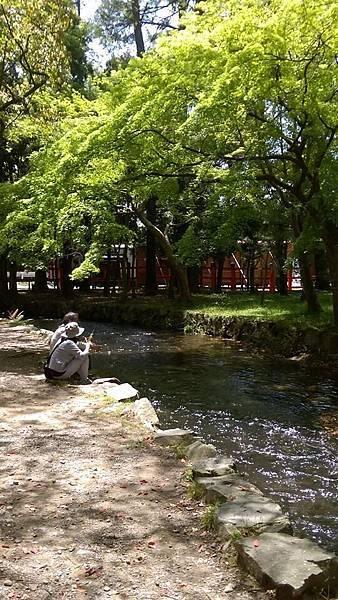 上賀荿河邊2.jpg
