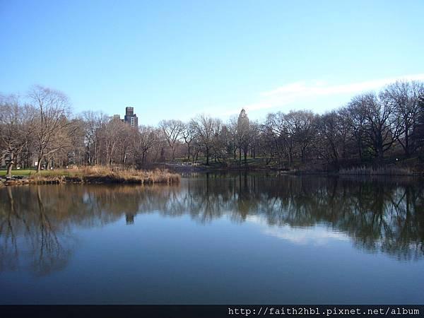 NYC 中央公園