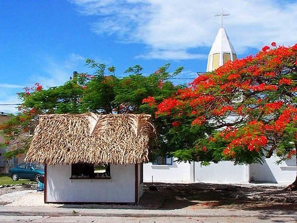 馬紹爾-教堂前的小茅屋