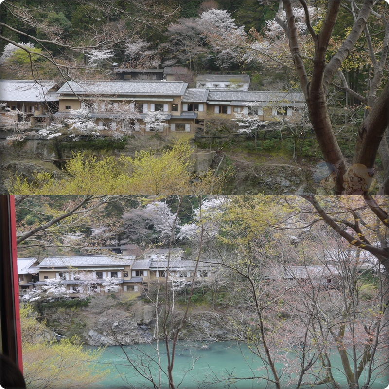 坐嵐山觀光小火車