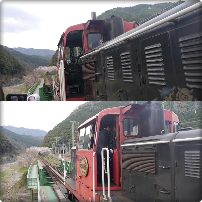 嵐山觀光小火車