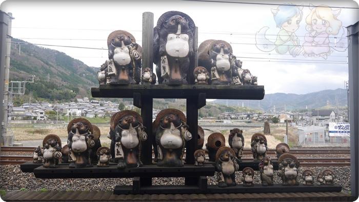 トロッコ亀岡駅上的狸貓