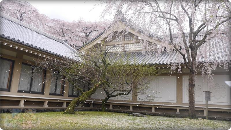 醍醐寺.灵宝館