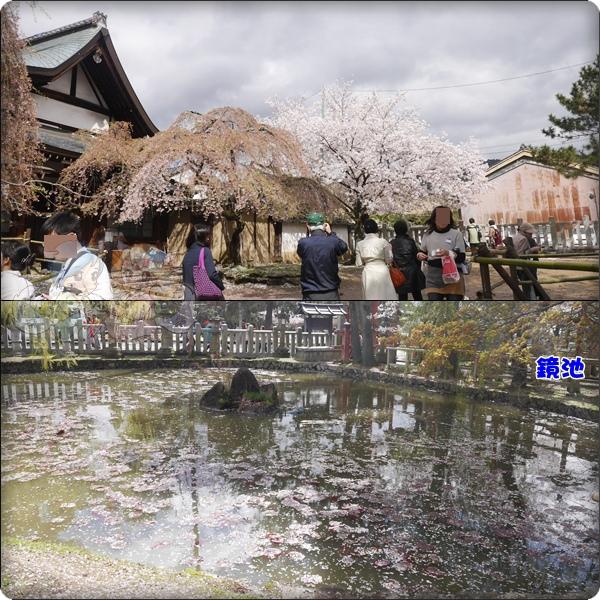 奈良.氷室神社