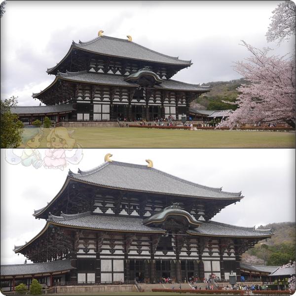 東大寺.大仏殿(金堂)