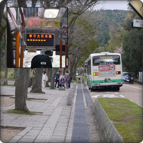 在奈良公園前面搭公車,準備前往春日大社
