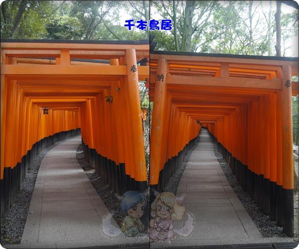 伏見稻荷神社.千本鳥居