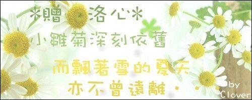 小雛菊vs夏飄雪