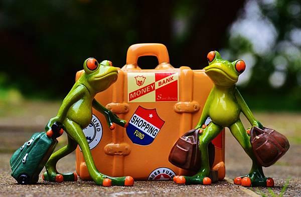 frog-991305_1920.jpg