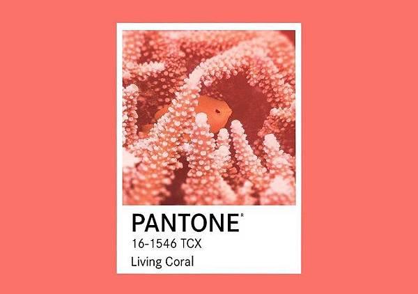 Pantone-Living-Coral-2019.jpg