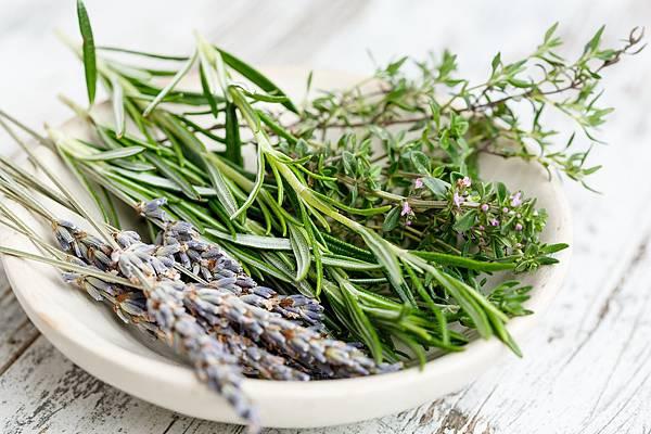 herbs-2523119_1280.jpg