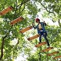 學員在樹林冒險體驗活動中挑戰個人目標