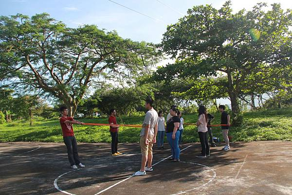 培訓課程中的團體活動