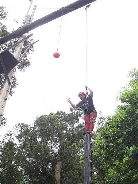 高空冒險教育