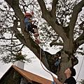 在培訓學員的協助與確保中,小朋友第一次體驗攀上樹冠.jpg