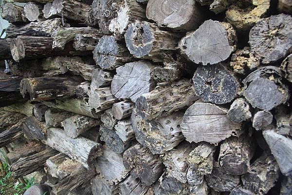 堆放的木材_8954