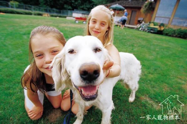 一家人寵物標本:動物標本