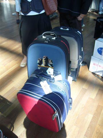我的爆炸行李箱,都站不穩了...