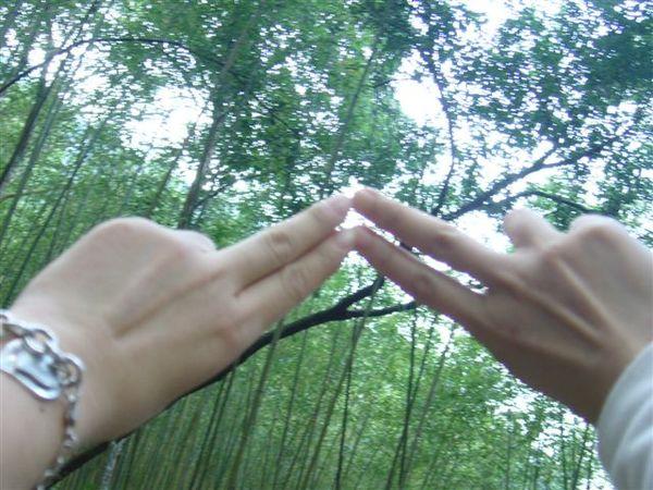 欸~我的五短手指...囧