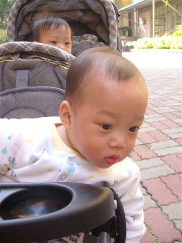 大寶眼睛這麼大是在看什麼....