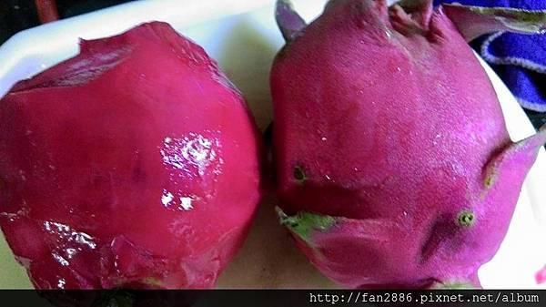 火龍果全食營養皮的花青素更多