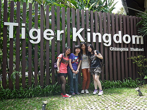 清邁 Tiger Kingdom.jpg