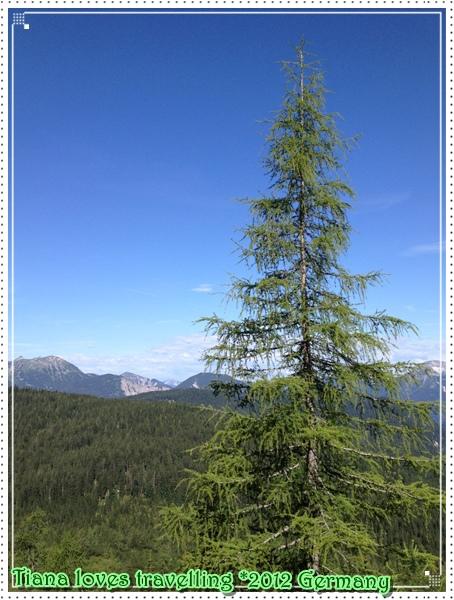 Zugspitze楚格峰  祖格峰  (22).jpg