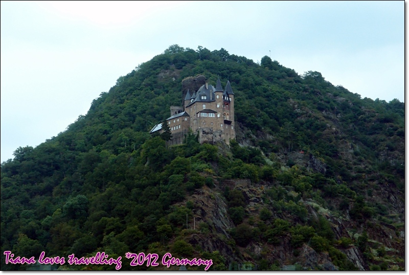 貓堡Burg Neukatzenelnbogen  Burg Katz