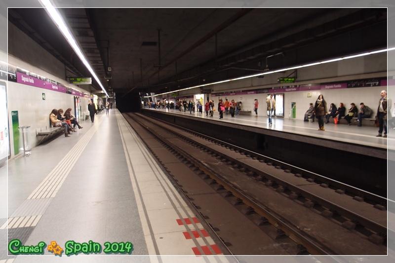 P1148331.JPG