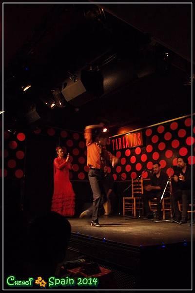 TARANTOS Flamenco (7)